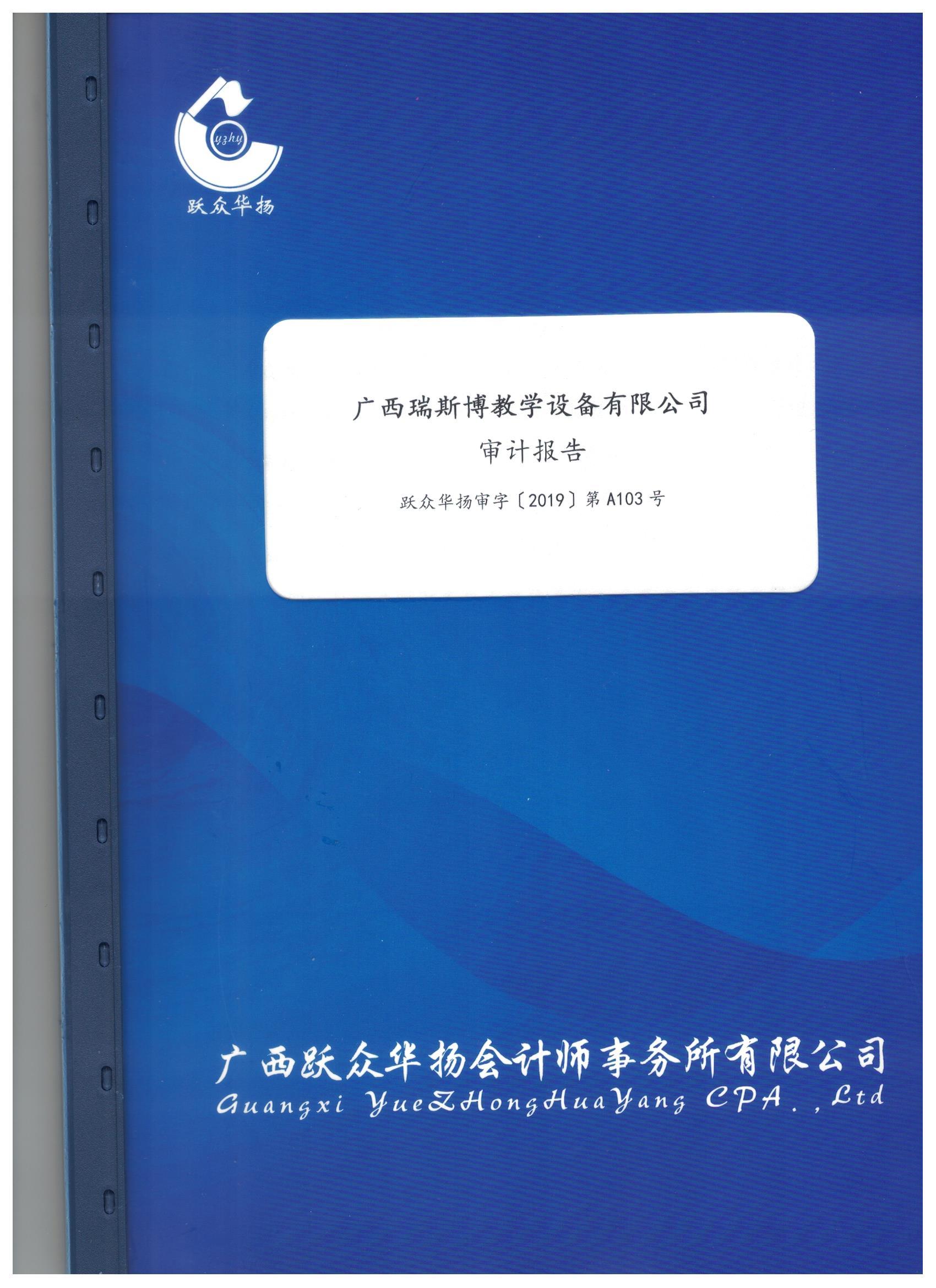 2018年审计报告